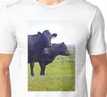 Cley Cows Too A Unisex T-Shirt