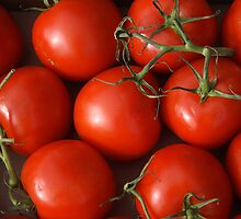 Ruby Red Tomatoes by Bo Insogna