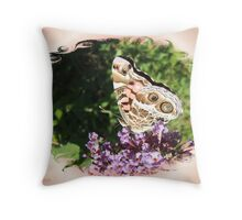 American Painted Lady 2 Throw Pillow
