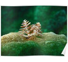 Junkyard Xmas Tree Worm Poster