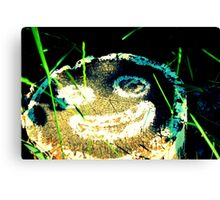 Hidden Smile Canvas Print