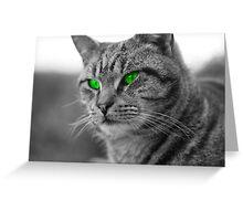 Enviromental Cat Greeting Card