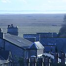 Chimneys & Rooftops by Louise Green