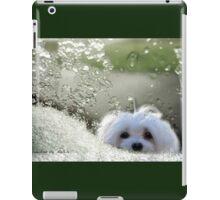 Snowdrop the Maltese - Please May I Come In ? iPad Case/Skin