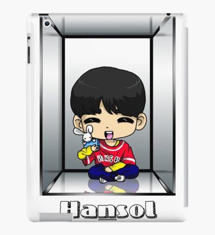 Hansol Anniversary iPad Case/Skin