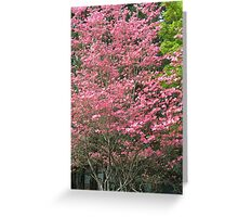 dogwood spring Greeting Card