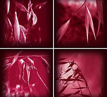 PINK GRASS COMBO by Bianca Stanton