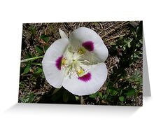 Heart of Sego Lily Greeting Card