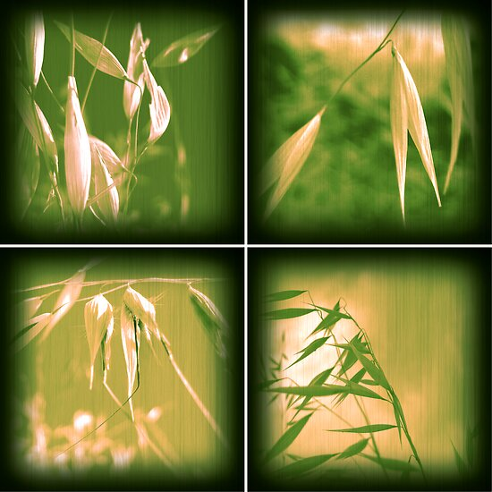 Green Grass Combo by Bianca Stanton