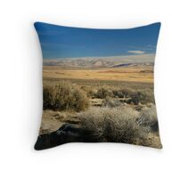 Driving Forward Throw Pillow