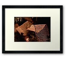 Tie a Mesh Ribbon 'Round the Ole Christmas Tree  Framed Print