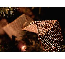 Tie a Mesh Ribbon 'Round the Ole Christmas Tree  Photographic Print
