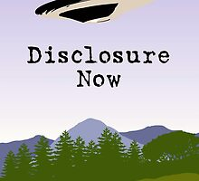 Disclosure Now  by Martin Rosenberger