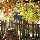 Autumn Light by Annette Blattman