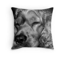 Sleepy,,,sleepy Throw Pillow