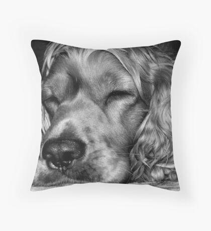 Sleepy,,,sleepy Throw Pillow