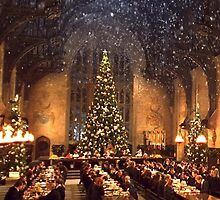 Hogwarts at Christmas by Serdd