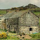 Hard Crag Farm... by Jamie  Green
