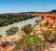 0873 The Mighty Murray by DavidsArt
