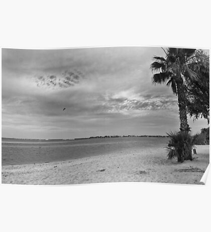 Morning at Cape Coral Beach  Poster