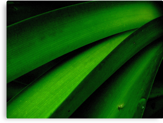 Greener than Green by Kitsmumma