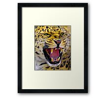 Crowns Framed Print