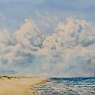 Studland to Sandbanks by Joe Trodden