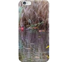 Duck at Heart Shaped Pond iPhone Case/Skin