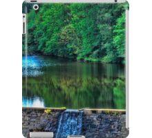 Waterfall at Minas Basin Pulp and Power Co   iPad Case/Skin