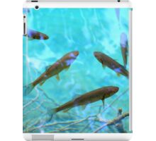 Fishes iPad Case/Skin