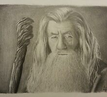 Gandalf the Gray by yoitslinds