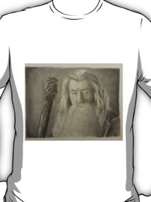 Gandalf the Gray T-Shirt
