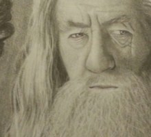 Gandalf the Gray Sticker