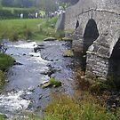 upper river dart by brucemlong