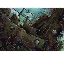 Underwater Shipwreck Photographic Print