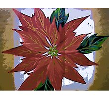 Comic Abstract Holiday Poinsetta Photographic Print