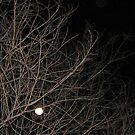 Moon Branches by Jrsjewels
