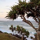 Cabarita Beach by Matthew Setright