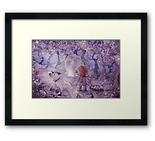 The Firefly Collectors Framed Print