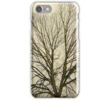 Stormstruck iPhone Case/Skin