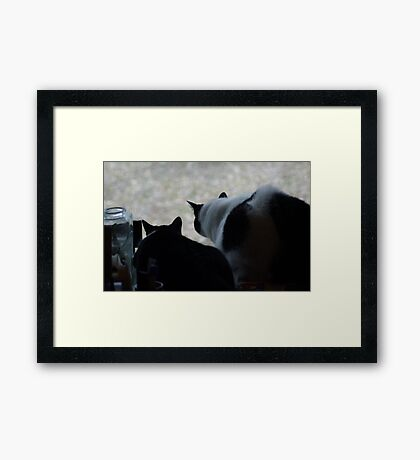 Which Way Did He Go? Framed Print