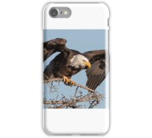 Bald Eagle: prelaunch wing test iPhone Case/Skin