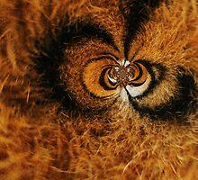 Tiger Eyes by StephanoViceRoy