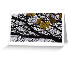 Last Days of Fall. Greeting Card