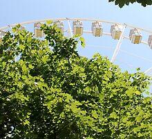 Parisian Ferris Wheel by Anne McGrath