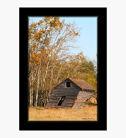 Slanted Shed Photographic Print