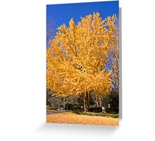 Yellow Tree in Fall Greeting Card