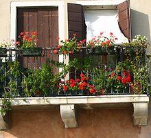 Venetian Window by PCDC