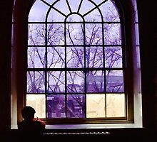 Boy in the Window by Anne McGrath