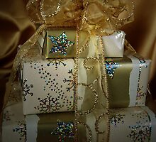 Christmas Gifting by Maria Dryfhout